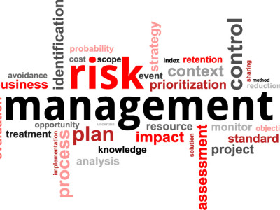 Risk Management 101 for Small Business Owners