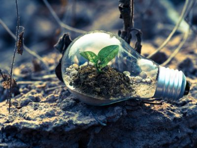 Turn Your Business Into An Eco-Driven Machine
